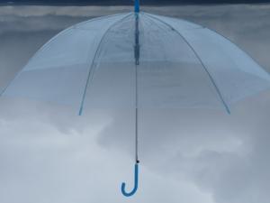 New Umbrella I
